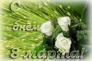 """Милые женщины! Фимрам """"домофон-Сервис"""" от всей души поздравляет вас с международным женским днем  желает успехов в делах, здоровья и семейного благополучия!"""